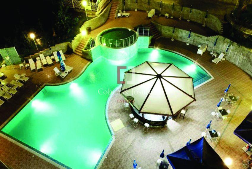 Nikea-Park-Pool-Top